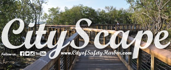 Citywide News from the City of Safety Harbor
