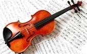 Bayside String Quartet
